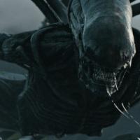 """¿Habrá """"Alien: Awakening""""?"""