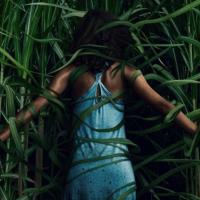 """""""En la hierba alta"""": podría haber sido mejor"""